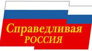 Справедливороссы выдвинули кандидата на довыборы в гордуму