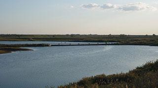 В пруды Алгайского района началось поступление воды