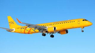 Руководители турагентств требуют уволить гендиректора «Саратовских авиалиний»