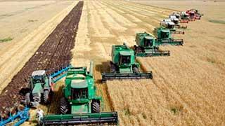 Минсельхоз РФ: Саратовская область отказалась от 181 млн рублей