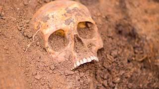 На месте бывшей штрафстоянки в Саратове нашли останки человека