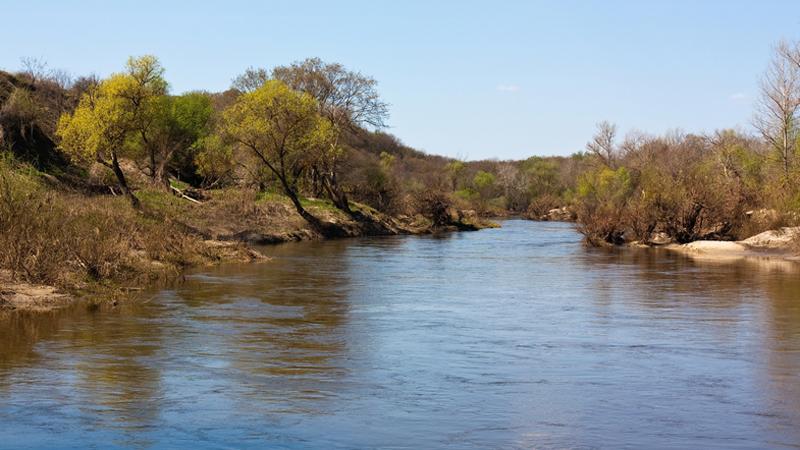 ВСаратовской области ограничат движение помосту через реку Медведица